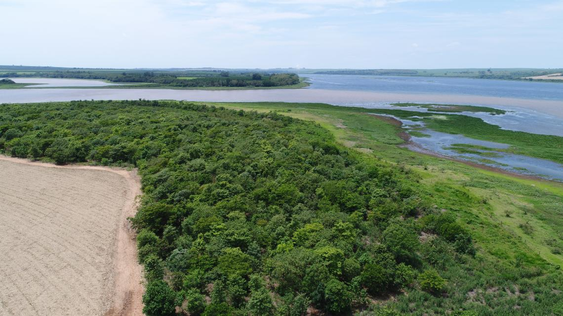 Forest corridors along the Tietê River (right) and one of its tributaries (left). © AES Brasil