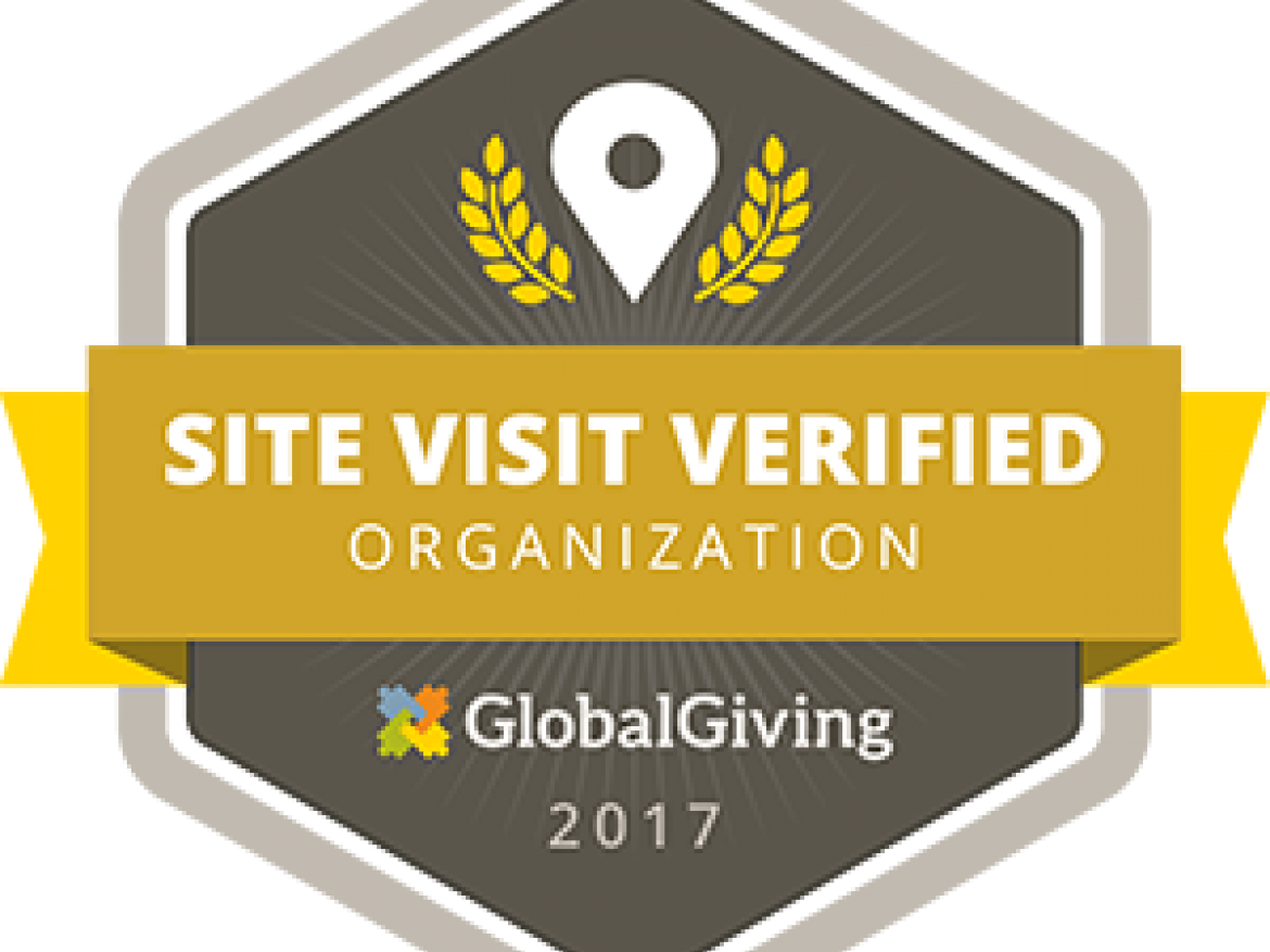 Global giving site visit verified